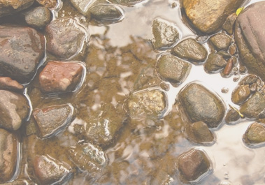 Rocks in creek