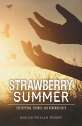 Strawberry Summer book cover