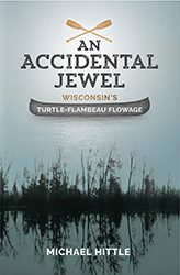 An accidental jewel book cover